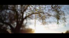 Spring15-Video-1