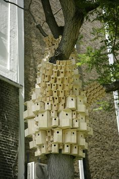 Spontaneous City in the Tree of Heavenby London...