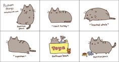 kitty kitty kitty kittyyyyyyyyyy~