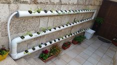 Grow Your Own Food! 🌱🌿🍓 - Easy to build DIY hydroponic system - LOW BUDGET — Steemit