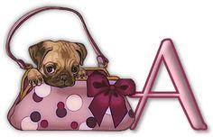 pixie__princess uploaded this image to 'les_animaux/Pug'.  See the album on Photobucket.