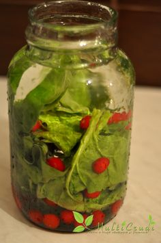 apa enzimatica 3 Home Remedies, Natural Remedies, Pickles, Health And Beauty, Cucumber, Mason Jars, Food, Smoothie, Medicine