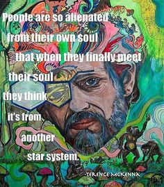 'People are so alienated from their own soul that when they finally meet their soul, they think it's from another star system'...Terence McKenna