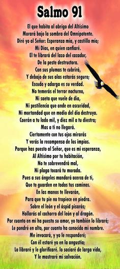 Catholic Prayers Daily, Spanish Prayers, Novena Prayers, Prayer Verses, God Prayer, Biblical Quotes, Bible Verses Quotes, Beautiful Prayers, Praise And Worship