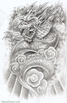 Japanese Koi Tattoo By Hawkeye619 On Deviantart  Free Download picture 8366