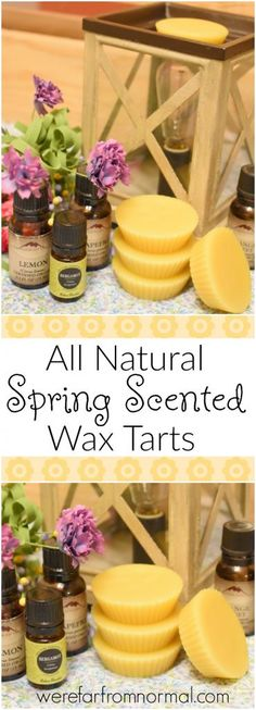 ~ 6 LARGE~PALM WAX  ~TARTS~~~SPRING FLOWERS~~~choose your scent,,,