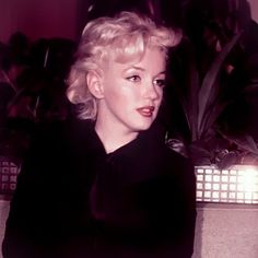 "Marilyn at a press conference for ""Bus Stop"" at the LA Airport Lounge, February 25th 1956."
