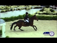 ▶ Jessica Springsteen and Davendy S in the $10,000 Intl Open Jumper Speed at the 2014 WIHS - YouTube