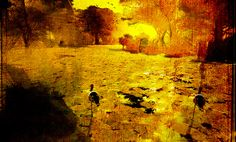 Palo Verde by Amona Savira, via Flickr Second Life, Landscapes, Drawings, Creative, Pictures, Painting, Design, Art, Palo Verde