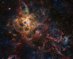 30 Doradus: The Tarantula Nebula. It is a giant emission nebula within our neighboring galaxy the Large Magellanic Cloud. The Tarantula Nebula is light years distant, and appears in the southern constellation Dorado. Giant Star, Half The Sky, Art Studio Design, Star Formation, Orion Nebula, Hubble Space Telescope, Light Year, To Infinity And Beyond, Out Of This World