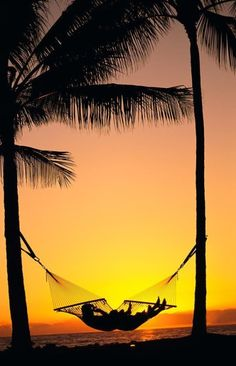 Tropical island beach sunset paradise in a hammock