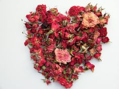Red rose buds dried from daisyshop.co.uk