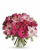 Send anniversary flowers from a real Southampton, NY local florist. Dutch Petals Inc has a large selection of gorgeous floral arrangements and bouquets. We offer same-day flower deliveries for anniversary flowers. Amazing Flowers, Fresh Flowers, Beautiful Flowers, Cheap Flowers, Nice Flower, Flower Colors, Bright Flowers, Exotic Flowers, Orange Flowers