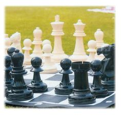 Giant Garden Chess Set  -  Yes!