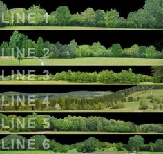 SketchUp Curved Tree Lines part 1 by Oliver Seha