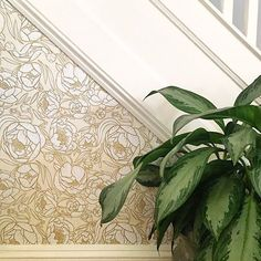 Crisp moldings, wallpaper (of the removable variety) + plants. Does it get any better? Thank you so much for sharing @katiehostetter #peelsticklove #removablewallpaper #plantsonwallpaper