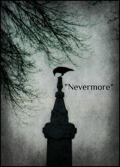 raven - Edgar Allen Poe                                                                                                                                                      More
