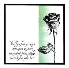 Card using Darkroom Door Full Bloom Vol 1 Rubber Stamps