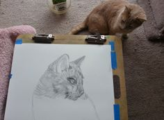 Free Pet Drawing from Wolff Den Press & Catty Shack Designs