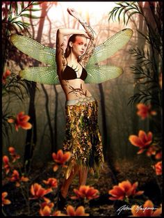 Fairy with dragonfly wings & flowers art