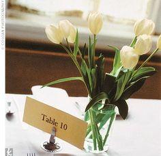 Tulip Centerpiece #wedding #flowers