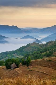 Apuseni Nature Park, Romania photo by Cornel Pufan www.romaniasfreinds.com