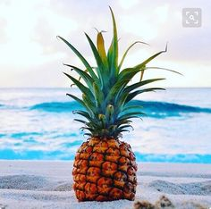 Everything about this pic is perfect!!!  #summer #ocean #pineapples #saltyhairdontcare