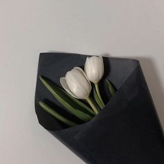 Our goal is to keep old friends, ex-classmates, neighbors and colleagues in touch. Classy Aesthetic, Black And White Aesthetic, Korean Aesthetic, Aesthetic Colors, Beige Aesthetic, Flower Aesthetic, Black N White, Aesthetic Pictures, Japanese Aesthetic