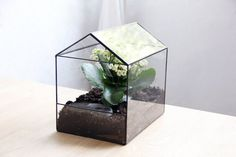 glass terrarium house by boxwoodtree on Etsy, $70.00