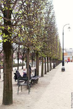 Spring in Jardin du Palais Royal | Flickr - Photo Sharing!