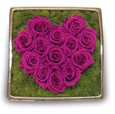 SILVER CONTAINER; RASPBERRY #66 ROSES; TURQUOISE MOSS!!!!! - Love is in the air