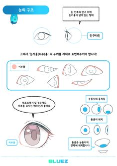 Body Reference, Drawing Reference Poses, Anatomy Reference, Drawing Tips, Manga Eyes, Anime Eyes, Manga Drawing Tutorials, Art Tutorials, Comic Tutorial