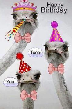 Happy Birthday to You. - Happy Birthday Funny - Funny Birthday meme - - Happy Birthday to You. The post Happy Birthday to You. appeared first on Gag Dad.
