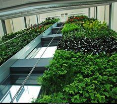 La arquitectura ecológica tiene sus ejemplos (6)