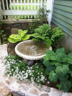 35 Front Yard and Backyard Landscaping Ideas For Beautiful Spring Garden - Homef. 35 Front Yard an Small Gardens, Outdoor Gardens, Water Gardens, Small Garden Patios, Small Courtyard Gardens, Small Front Yard Landscaping, Landscaping Design, Courtyard Landscaping, Landscaping Software