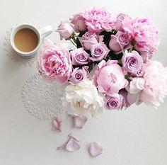 Imagine flowers, pink, and rose My Flower, Fresh Flowers, Beautiful Flowers, Pink Flowers, Beautiful Bouquets, Design Jardin, No Rain, Arte Floral, Planting Flowers