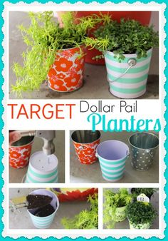 Use these adorable dollar section pails as planters for an inexpensive gift idea. So easy and cute!