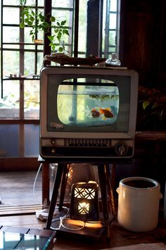 2 things i would love to have in my home one day: old TV fish tank & piano desk