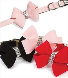 Nouveau Bow Dog Collars
