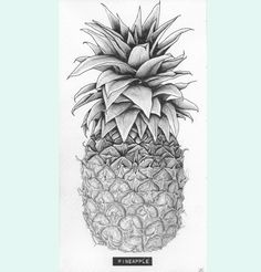 Pineapple original pencil drawing // Food & by carlijnclaire, €85.00