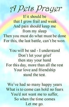 This is so touching. For Tabitha who crossed over the rainbow bridge :( Pet Loss Quotes, Dog Quotes, Animal Quotes, Prayer Quotes, Prayer For Deceased, Pass Away Quotes, Rainbow Bridge Poem, Pet Poems, Dog Passed Away
