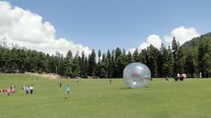 Zorbing on a gentle slope. See more zorbing on http://www.zorbingtime.com/