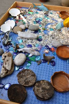 Loose parts tray - Stumping in the Mud ≈≈