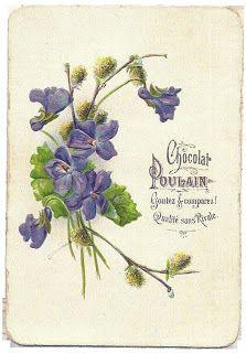 Коллекция картинок: Винтажные открытки с цветами 1