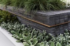 Avant-Garden Melbourne International Flower and Garden Show Melbourne Australia by Acre Landscape Architecture Studio