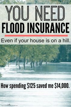 Fema Flood Insurance Quote The National Flood Insurance Program  Femagov  Aark™ Insurance