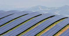 solar fields - Google Search