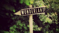 Alice in Wonderland / karen cox. Alice In Wonderland Aesthetic, Adventures In Wonderland, Lizzie Hearts, Go Ask Alice, Alice Liddell, Chesire Cat, Were All Mad Here, Fb Covers, Timeline Covers