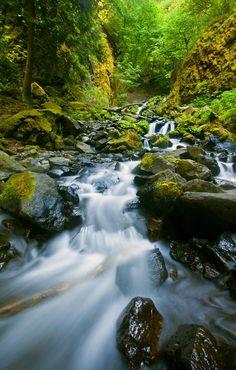 Starvation Creek Falls by Mike Dawson