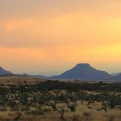 Sunset in the Free State. South Africa.